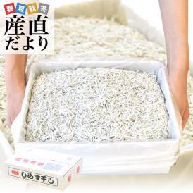 徳島県椿泊産 しらす干し 1キロ入り 業務用箱 シラス  送料無料