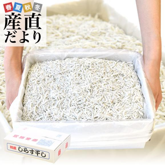 徳島県椿泊産 しらす干し 1キロ入り 業務用箱 シラス  送料無料01