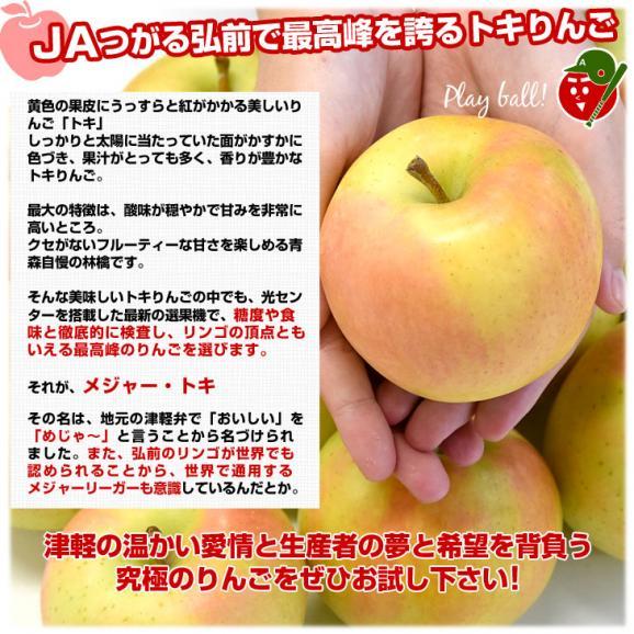 青森県より産地直送 JAつがる弘前 弘前のりんご メジャー トキ 3キロ (小玉 13玉入り) 送料無料 りんご リンゴ 林檎05
