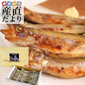 送料無料 北海道から産地直送 北海道産 本ししゃも 子持ちのメス 30尾入化粧箱 柳葉魚 本シシャモ