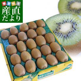 福岡県より産地直送 JAふくおか八女 キウイフルーツ 甘熟娘(うれっこ) 超大玉 3L 約3.6キロ(24玉) 送料無料 きうい