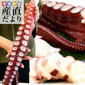 送料無料 北海道産 孝子屋のお刺身用 極太タコ足 浜ゆでの超特大サイズ 1本 800g