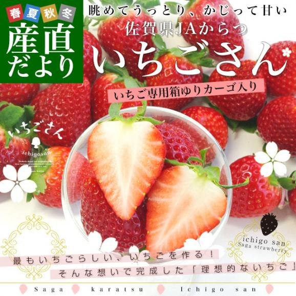 佐賀県より産地直送 JAからつ 新品種いちご いちごさん 苺専用箱ゆりカーゴ入り 450g (15粒から18粒) イチゴサン イチゴさん いちごサン 唐津 うまかもん 送料無料02
