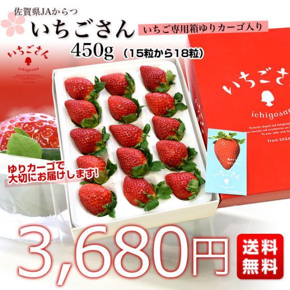送料無料 佐賀県より産地直送 JAからつ 新品種いちご いちごさん DX 450g 15粒から18粒 苺専用箱ゆりカーゴ入り イチゴサン イチゴさん いちごサン 唐津 うまかもん03