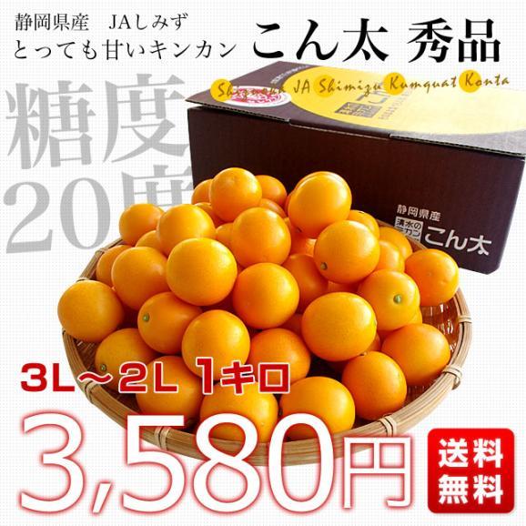 静岡県産 JAしみず こん太きんかん 3Lから2L 秀品 約1キロ 市場スポット 金柑 キンカン03