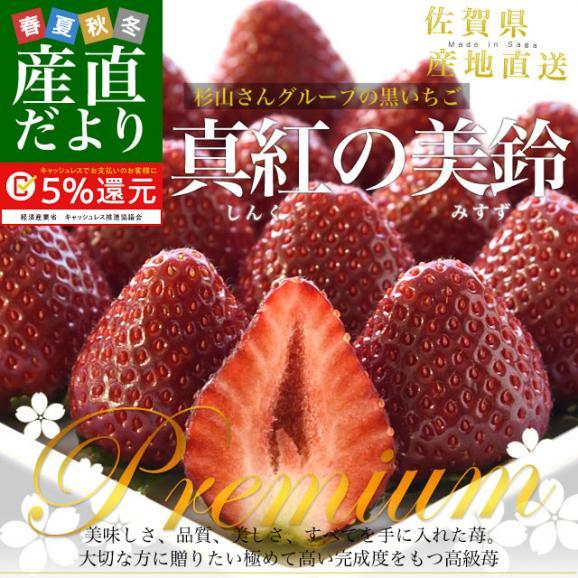 佐賀県より産地直送 佐賀県 杉山さんグループの黒いちご 真紅の美鈴(みすず) 大粒 化粧箱 約230g (6粒から8粒) 苺 イチゴ しんくのみすず 黒いちご02