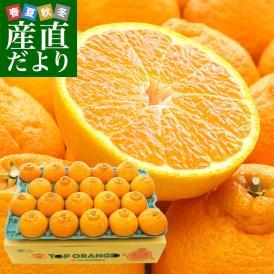 熊本県産 田の浦柑橘組合 トップオレンジ 不知火(しらぬひ) 3LからLサイズ 5キロ (18玉から24玉) 送料無料 しらぬい 柑橘 オレンジ 市場スポット