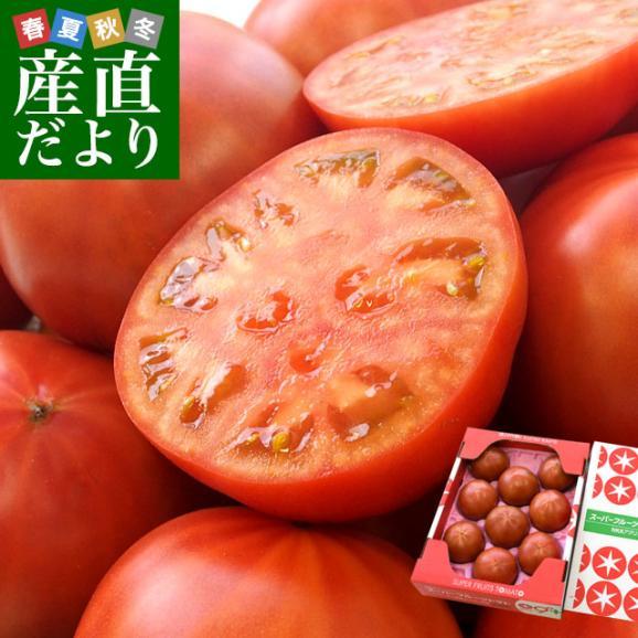 茨城県より産地直送 NKKアグリドリーム スーパーフルーツトマト 9度+ A品 約1キロ(8玉から16玉)  送料無料 高糖度トマト NKKトマト01