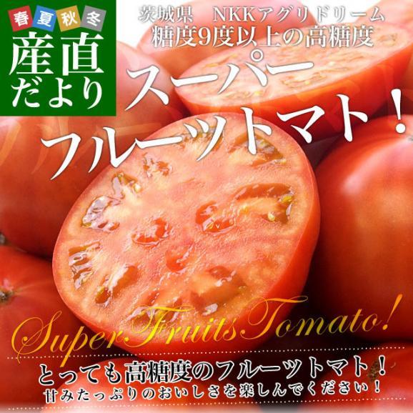 茨城県より産地直送 NKKアグリドリーム スーパーフルーツトマト 9度+ A品 約1キロ(8玉から16玉)  送料無料 高糖度トマト NKKトマト02