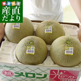 茨城県産 JA茨城旭村 オトメメロン 4Lから3Lサイズ 5キロ箱 (3玉から4玉) 送料無料 市場スポット