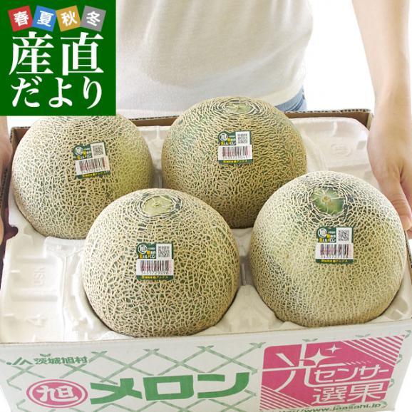 茨城県産 JA茨城旭村 アンデスメロン 4Lから2Lサイズ 5キロ箱 (3玉から5玉) 送料無料 市場スポット01