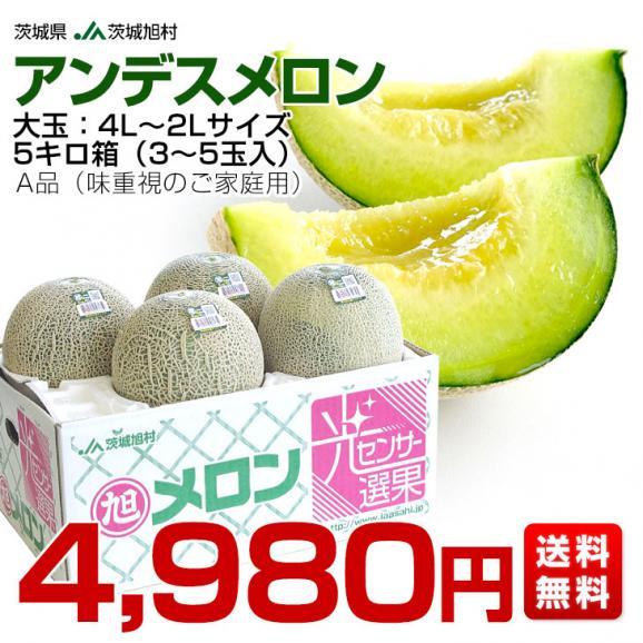 茨城県産 JA茨城旭村 アンデスメロン 4Lから2Lサイズ 5キロ箱 (3玉から5玉) 送料無料 市場スポット03