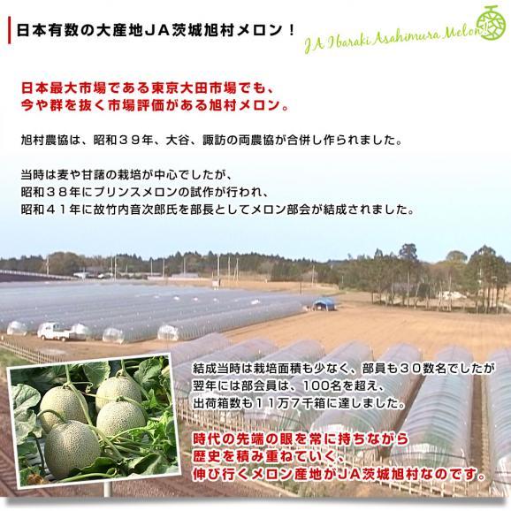 茨城県産 JA茨城旭村 アンデスメロン 4Lから2Lサイズ 5キロ箱 (3玉から5玉) 送料無料 市場スポット05