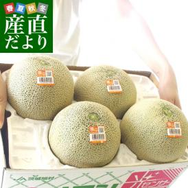 茨城県産 JA茨城旭村 クインシーメロン 4Lから2Lサイズ 5キロ箱 (3玉から5玉) 送料無料 市場スポット