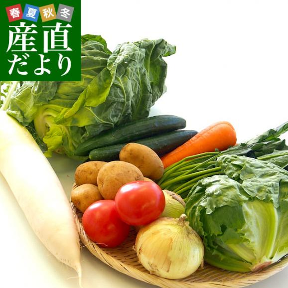 市場からご自宅へ直送 たっぷり野菜詰め合わせ 応援セット (国産おまかせ野菜10品セット)01