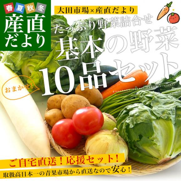 市場からご自宅へ直送 たっぷり野菜詰め合わせ 応援セット (国産おまかせ野菜10品セット)02