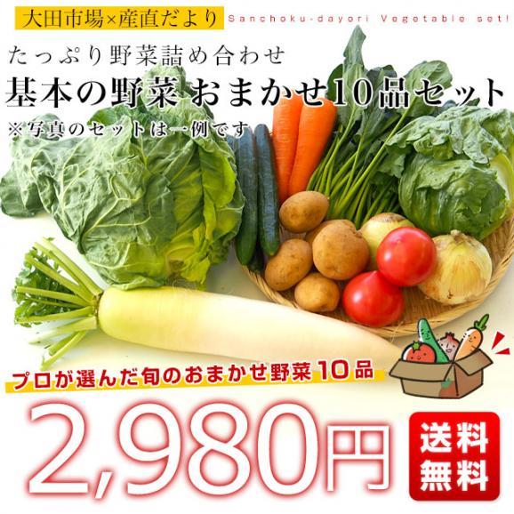 市場からご自宅へ直送 たっぷり野菜詰め合わせ 応援セット (国産おまかせ野菜10品セット)03
