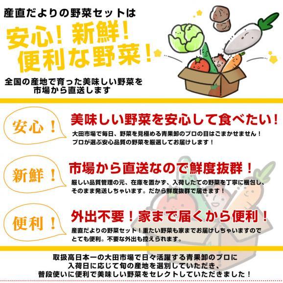 市場からご自宅へ直送 たっぷり野菜詰め合わせ 応援セット (国産おまかせ野菜10品セット)04