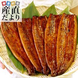 テレビで話題!山田水産の鰻 鰻師・加藤尚武さん達が愛情込めて育てた鰻をお届け