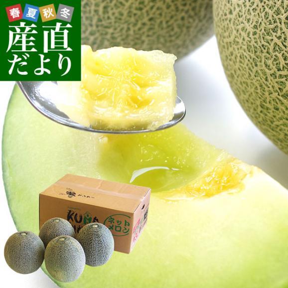 熊本県産 JA熊本市またはJA熊本うき タカミメロン 約5キロ 4Lから3Lサイズ (3玉から4玉) 送料無料 市場スポット01