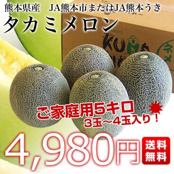 熊本県産 JA熊本市またはJA熊本うき タカミメロン 約5キロ 4Lから3Lサイズ (3玉から4玉) 送料無料 市場スポット03