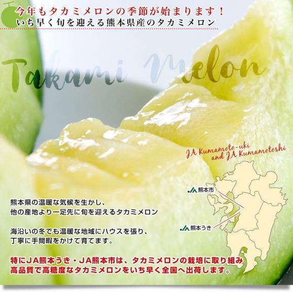 熊本県産 JA熊本市またはJA熊本うき タカミメロン 約5キロ 4Lから3Lサイズ (3玉から4玉) 送料無料 市場スポット04
