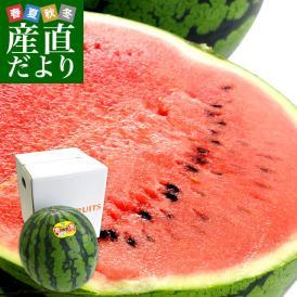 鳥取県より産地直送 JA鳥取中央 倉吉スイカ 極実(ごくみ) 秀品 3L以上の大玉 8キロ以上 送料無料 西瓜 すいか