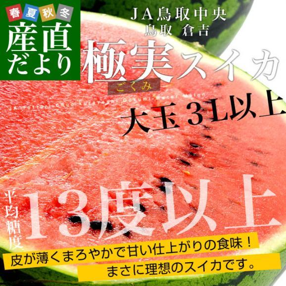 鳥取県より産地直送 JA鳥取中央 倉吉スイカ 極実(ごくみ) 秀品 3L以上の大玉 8キロ以上 送料無料 西瓜 すいか02