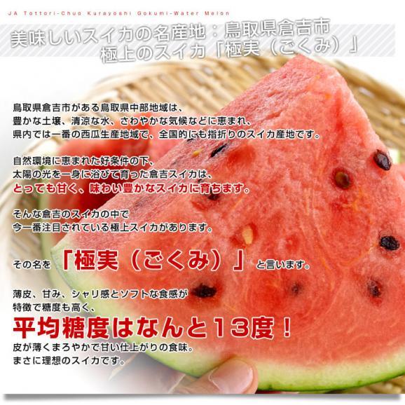 鳥取県より産地直送 JA鳥取中央 倉吉スイカ 極実(ごくみ) 秀品 3L以上の大玉 8キロ以上 送料無料 西瓜 すいか04
