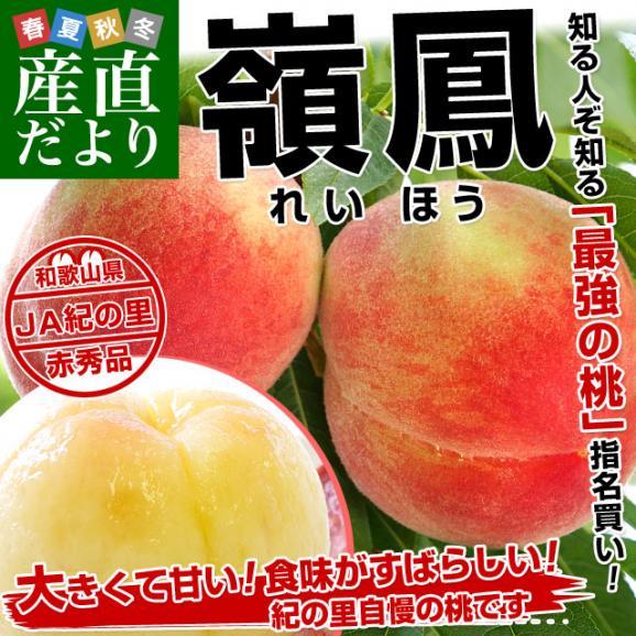 和歌山県より産地直送 JA紀の里 紀の里の桃 嶺鳳 赤秀品 1.8キロ (6玉から8玉) 送料無料 桃 もも02