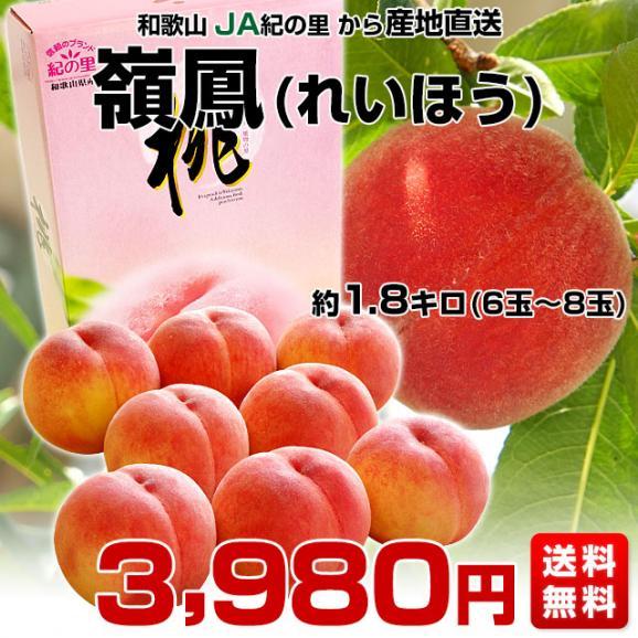 和歌山県より産地直送 JA紀の里 紀の里の桃 嶺鳳 赤秀品 1.8キロ (6玉から8玉) 送料無料 桃 もも03
