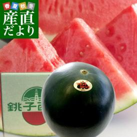 千葉県産 JAちばみどり 銚子の黒皮スイカ ブラックジャック 4L 大玉1玉 約10キロ 送料無料 西瓜 すいか