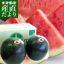 千葉県産 JAちばみどり 銚子の黒皮スイカ ブラックジャック 3L×2玉(約8キロ×2玉) 送料無料 西瓜 すいか