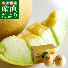 青森県より産地直送 完熟収穫 つがりあんメロン アムさんメロン 2玉入り化粧箱 (約1.3キロ×2玉) 送料無料 メロン