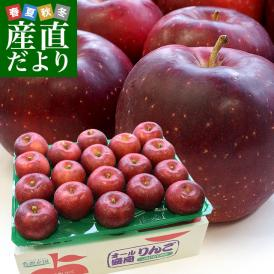 岩手県より産地直送 JA全農いわて 岩手県オリジナル品種 紅いわて 秀品 約5キロ (14から20玉) 送料無料 林檎 リンゴ