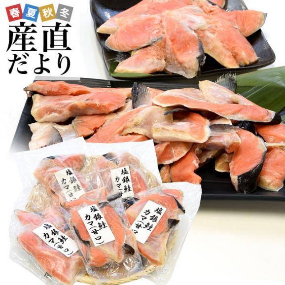 宮城県産 銀鮭のカマ 超ボリューム1.8キロ (360g×5袋)送料無料 ぎんさけ さけかま01