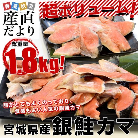 宮城県産 銀鮭のカマ 超ボリューム1.8キロ (360g×5袋)送料無料 ぎんさけ さけかま02