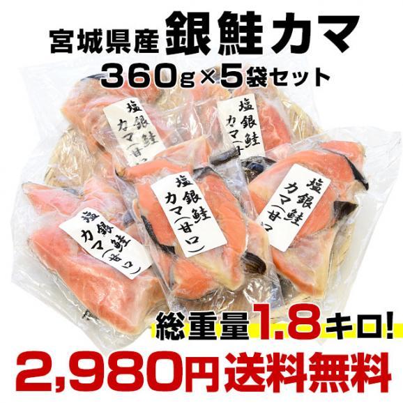 宮城県産 銀鮭のカマ 超ボリューム1.8キロ (360g×5袋)送料無料 ぎんさけ さけかま03