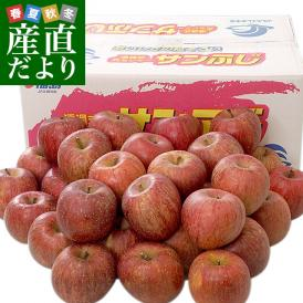 福島県 JAふくしま未来「サンふじりんご」 秀品 10キロ(32玉から40玉前後) 送料無料 林檎 リンゴ 市場発送