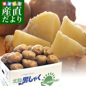 北海道産 JAきたみらい他 じゃがいも男爵 超特大3Lサイズ 10キロ(35玉前後) 送料無料 じゃがいも だんしゃく 馬鈴薯