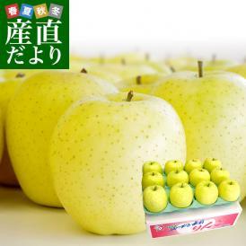 青森県より産地直送 JAつがる弘前 産直りんご 「王林」 3キロ (9玉から13玉) 送料無料 林檎 リンゴ 津軽