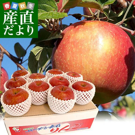 青森県より産地直送 JAつがる弘前 サンふじ 超大玉 5キロ (9玉から10玉) 送料無料 りんご リンゴ 林檎01