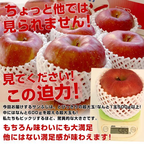 青森県より産地直送 JAつがる弘前 サンふじ 超大玉 5キロ (9玉から10玉) 送料無料 りんご リンゴ 林檎04