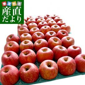 青森県産 JA津軽みらい ツル割れ・サンふじ  10キロ(32玉から50玉前後) 送料無料 市場発送 リンゴ 林檎 りんご