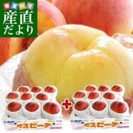 福島県より産地直送 JAふくしま未来 秀品桃 ミスピーチ(あかつき限定)約2キロ×2箱セット   (8玉から9玉×2箱) 送料無料 もも 桃