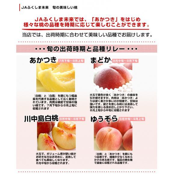 福島県より産地直送 JAふくしま未来 秀品桃 ミスピーチ 約2キロ×2箱セット   (5玉から9玉×2箱) 送料無料 もも 桃05