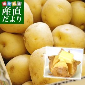 静岡県産 JAとぴあ浜松  三方原馬鈴薯 秀品 Lサイズ 3キロ(24玉前後) 送料無料 ジャガイモ ばれいしょ 馬鈴薯 静岡 みかたっぱら 大田市場発送品