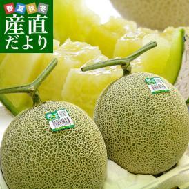 茨城県 JA茨城旭村 アールスメロン 糖度13度以上 約3キロ (大2玉) 送料無料 めろん 市場スポット