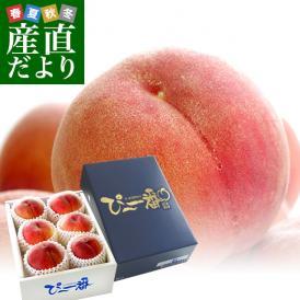 高糖度の一握りの桃「信玄」!甘みたっぷりな極上の味わい!