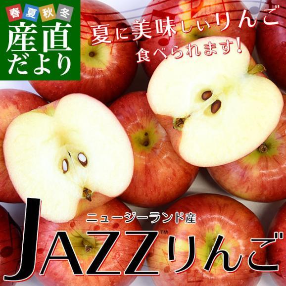 ニュージーランド産 JAZZりんご(品種:サイフレッシュ)約2キロ(11から15玉入)リンゴ 林檎 送料無料 市場発送02